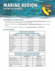 2014 Regional Statistical Summary