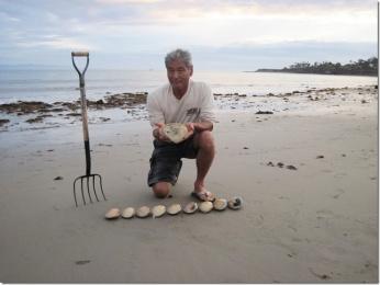 record clam