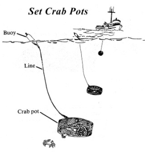 crab pot gear