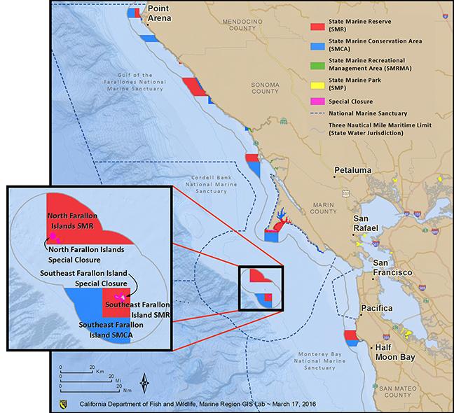 Exploring California's Marine Protected Areas: The Farallon Islands