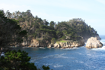 Exploring california s marine protected areas point lobos for Blue fish cove