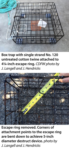 crab trap and opening