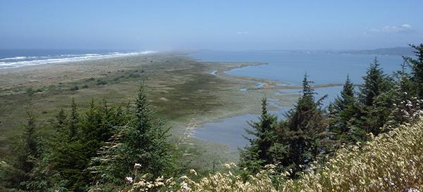 south humboldt bay
