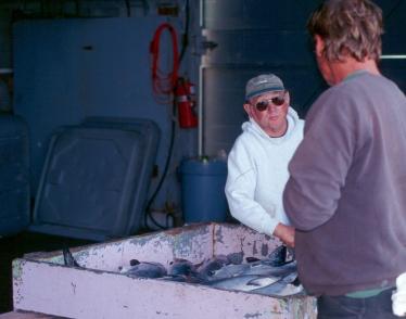fish buyer
