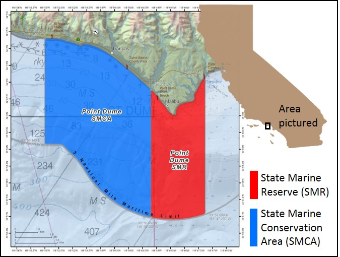 Exploring Californias Marine Protected Areas Point Dume State
