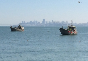 Herring fishing vessels on San Francisco Bay
