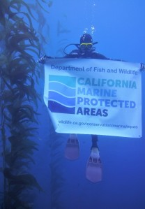 CDFW MPA Banner underwater at the Blue Cavern Onshore SMCA