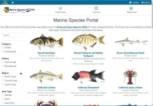 Marine Species Portal image
