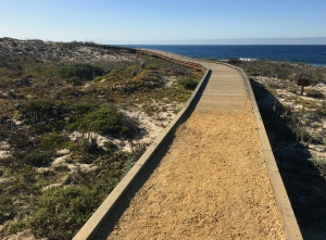 walking trail at Asilomar SMR