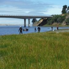 researchers at Ten Mile Estuary SMCA